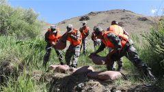 新疆軍區某邊防團開展抗洪救災演練 錘煉應急處置能力