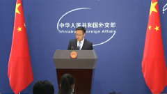 外交部:某些域外国家才是影响南海局势稳定的根本原因
