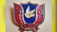 """""""抗美援朝纪念章"""":志愿军老兵跨越62年的记忆"""