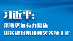 习近平:采取更加有力措施 切实做好防汛救灾各项工作