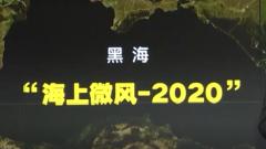 """""""海上微风-2020""""多国军演在黑海举行"""