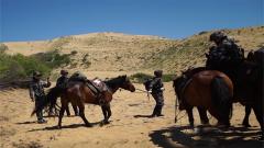 惊险!沙漠温度超过50摄氏度 军马因体力不支而卧倒