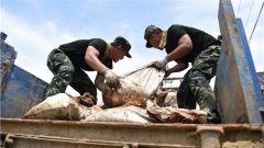 安徽铜陵:武警投身灾后重建 助力群众重返家园