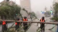 """台风""""黑格比""""浙江登陆 千余民兵奋战抢险一线"""