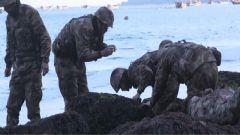新奇!记者跟随守岛官兵一起体验海洋岛赶海活动