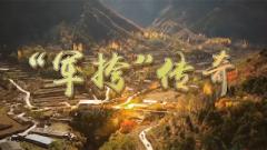 """《軍迷行天下》20200812《""""軍挎""""傳奇》"""