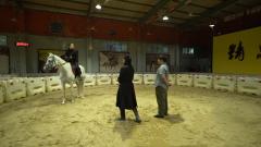戰馬試乘初體驗 在線教你專業技巧