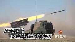 【第一军视】轰轰轰!多炮种联合实弹射击 场面震撼