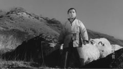 【軍視觀影團·第2集 】抗戰時期八路軍的緊急信為啥叫雞毛信?