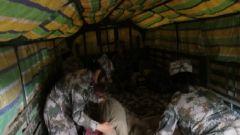 海拔3700米突降大雨 汽車女兵野外休息卻迎來意外挑戰