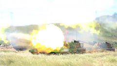 炮火连天! 快打快撤! 看部队多炮种多地域条件下火力打击