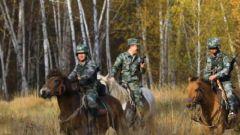 骑乘军马穿越白桦林 巡逻官兵纷纷感叹:就像走在童话世界里