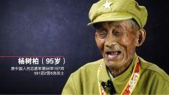 【抗美援朝记忆】志愿军老战士杨树柏:哪怕就有一个活的,也不能丢下伤员!