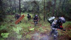 陸軍第75集團軍某旅:晝夜連貫 錘煉多兵種協同打擊能力