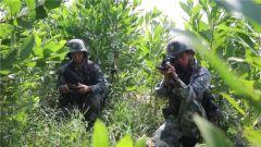 【直擊演訓場】陸地 步兵作戰單元實兵實彈戰術考核