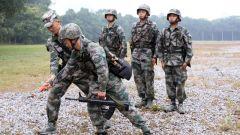 全面推行集约专修首席教练员模式 助推军事训练成绩提升