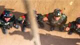 进行爬绳训练。作者:安志伟