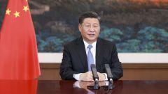 习近平在第十七届中国-东盟博览会和中国-东盟商务与投资峰会开幕式上的致辞(全文)