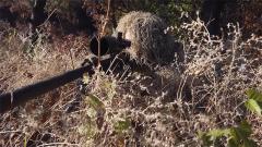 如何在極端環境中控制呼吸?探秘狙擊手射擊訓練
