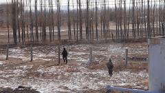 新疆军区塔城军分区开展无人机空地一体处突演练
