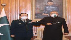 巴基斯坦總統、總理會見魏鳳和