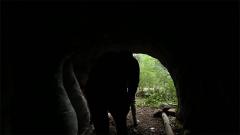 跟着军迷探访神秘山洞 体会挖掘藏兵洞的不易
