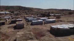 埃塞俄比亞:提格雷州首府開始逐步恢復正常秩序