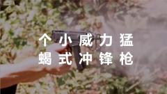 【军视小课堂·持续火力专题】  第11集 个小威力猛 Vz.61蝎式冲锋枪