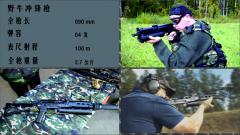 【军视小课堂·持续火力专题】 第12集 名门之后 野牛冲锋枪