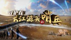 《军事纪实》20201211《守护在长江源头的哨兵》