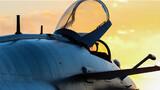 战鹰归巢。摄影:王国云