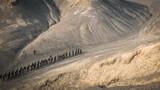 """天山南麓,火焰山旁,最低气温已经降至零下10摄氏度。近日,武警新疆总队吐鲁番支队""""魔鬼周""""极限训练在此地域火热展开,综合开展了战术、技能、生存、心理和极限体能等35个训练内容。7天7夜的时间内,特战队员人均负重不少于30公斤、每日训练不少于18小时。紧张密集的训练课目,让特战队员在紧贴实战的环境中锤炼打赢本领,全力锻造反恐利刃。图为特战队员在戈壁山谷中长途行军"""