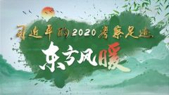 习近平的2020考察足迹丨东方风暖