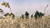 特战队员对开阔地带进行搜索。