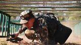 """近日,武警文山支队开展战术课目训练,他们把""""战""""字刻在心头,锤炼官兵过硬作风。"""