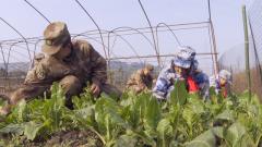 陆军第77集团军某旅:帮助驻地贫困学子成长成才 我们在行动
