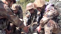 陆军第72集团军某合成旅:丛林渗透,侦察兵敌后武装破袭