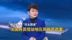 """法国防长称法国是""""印太国家"""" 苏晓晖:为搅动地区局势而遮羞"""