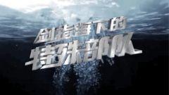 《军事纪实》20210325 《剑指海下的特殊部队》