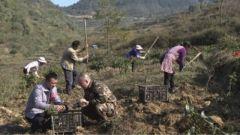 普梯村:军民携手助脱贫 乡村振兴促发展