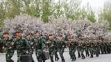 4月12日,武警天津总队某支队运输保障分队精心组织了 一次城市化运输投送演练,有效提升了官兵运输安全素质、安全防范意识及车队定点投送能力。图为任务分队官兵迅速响应。