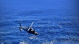 4月23日是一个特殊的日子,是人民海军72周岁的生日。人民海军向海图强,乘风破浪御海疆。(存图方法:长按图片-保存至手机 作者:周演成 李章龙 张凯 邵龙飞 严陈 李唐 代宗锋 设计:迟禹君)图为潜艇与直升机进行协同训练