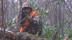高山密林风景绝美 侦察兵们在这里展开一系列高难训练