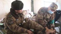 上高原 下基层 专家医疗分队为驻训官兵巡诊