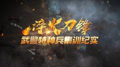 《军事纪实》20210412《淬火刀锋·武警特种兵集训纪实》