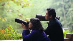 """拍摄大熊猫的""""神仙眷侣"""":她为他放弃深造机会  他带她走过有熊猫的地方"""