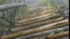 【原始森林里的红色足迹】 红军如何翻越险峻的虎头山?