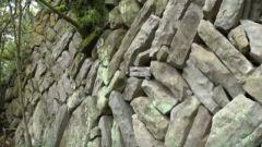 【原始森林里的红色足迹】 残破的石墙见证过怎样激烈的战斗?