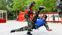 武警北京总队执勤第六支队:擒敌竞技 龙腾虎跃