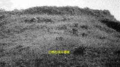罗浮山会议:25人誓死守卫三棵松  国民党强攻损失惨重大败而逃